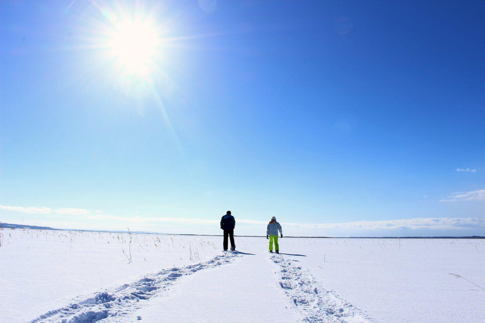 きらめく雪の大地へ!サロベツ湿原スノーシューハイキングサロベツ湿原スノーシューハイキング