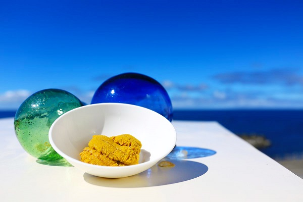 【利尻島】利尻で天然ウニ採り&極上のウニ試食プラン美味しくて楽しい極上体験★ウニを採って食べよう