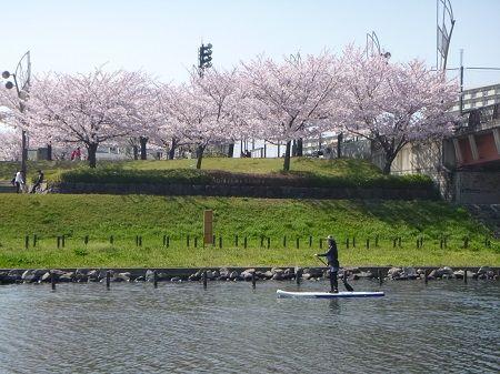 都内でできる都市型アウトドア☆スタンドアップパドルボート「SUP」体験!東京SUP体験