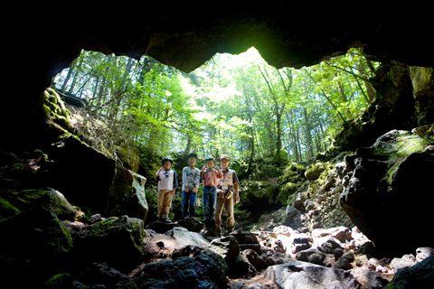 青木ケ原樹海・洞窟探検・ミステリーAコース。青木ケ原樹海・洞窟探検・ミステリーAコース。