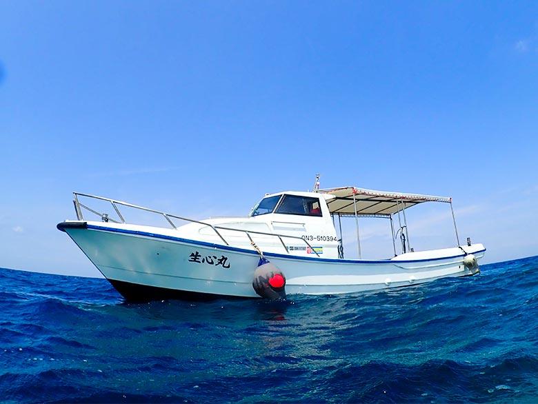 """≪宮古島から15分""""大神島""""でボートシュノーケル!≫美しい海とブルーサンゴの世界へご案内!夏の思い出は「大神島マリンプラン」で決まり!離島で感動体験!昼食付きプラン"""