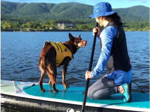 <山中湖>SUP体験/お子様もご一緒に!10才から参加OK!愛犬も一緒に体験OK!<SUP験コース>初心者歓迎!富士山をバックにSUP体験(60分)
