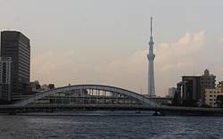 東京初の海上アトラクション!!!RIBツアー高速クルーズ午前便(40分)