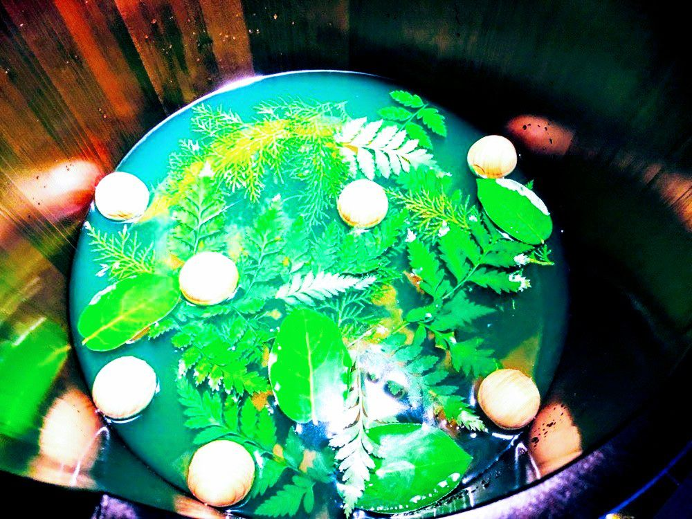 お花or緑茶の足湯&フットケアコース(椿or蘭)お花or緑茶の足湯&フットケア15分コース(椿30分or蘭30分コース)