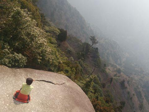 白谷雲水峡 1日満喫コース【屋久島道の駅観光】白谷雲水峡 1日満喫コース