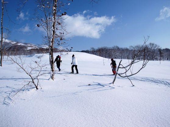 【北海道・ニセコ開催】パウダースノーを贅沢に楽しむ!ネイチャースキー<ティータイム付き>ニセコを歩こう♪ネイチャースキー 【午前コース】