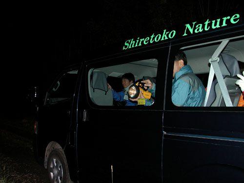 夜の動物ウォッチング~エゾシカやキタキツネを見に行こう!~夜の動物ウォッチング