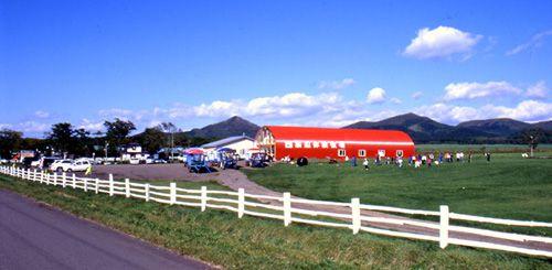 北海道の広さを実感!渡辺牧場で感動体験 ☆ 乳しぼり体験とトラクター周遊コース〔40分コース〕みんなでワイワイ・キャーキャー楽しもう!牧場ならではの牛の乳しぼり体験とトラクターで草原周遊コース〔40分〕