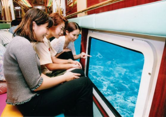 泳がなくても沖縄の海の中を覗けちゃう!!世界発の大型水中観光船「オルカ号」で沖縄のトロピカルフィッシュ会いに行こう♪【1便 9:00発】水中観光クルーズ「オルカ号」