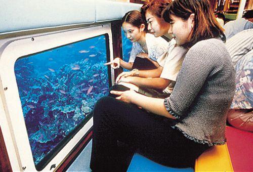 大型水中観光船オルカ号&人気のステーキハウス