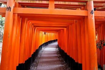 <BF>Kyoto Highlights/京阪バス【JR京都駅烏丸口 10:00】発/Kyoto Highlights<多言語音声ガイド付>