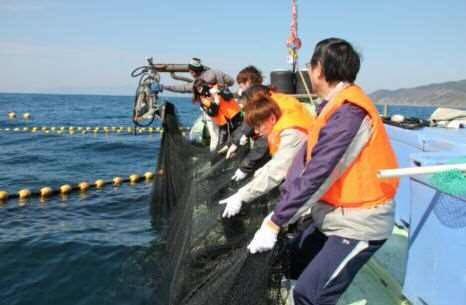 【宮崎県】串間の海と綱引きだ!ホンモノ!定置網体験串間の海と綱引きだ!ホンモノ!定置網体験