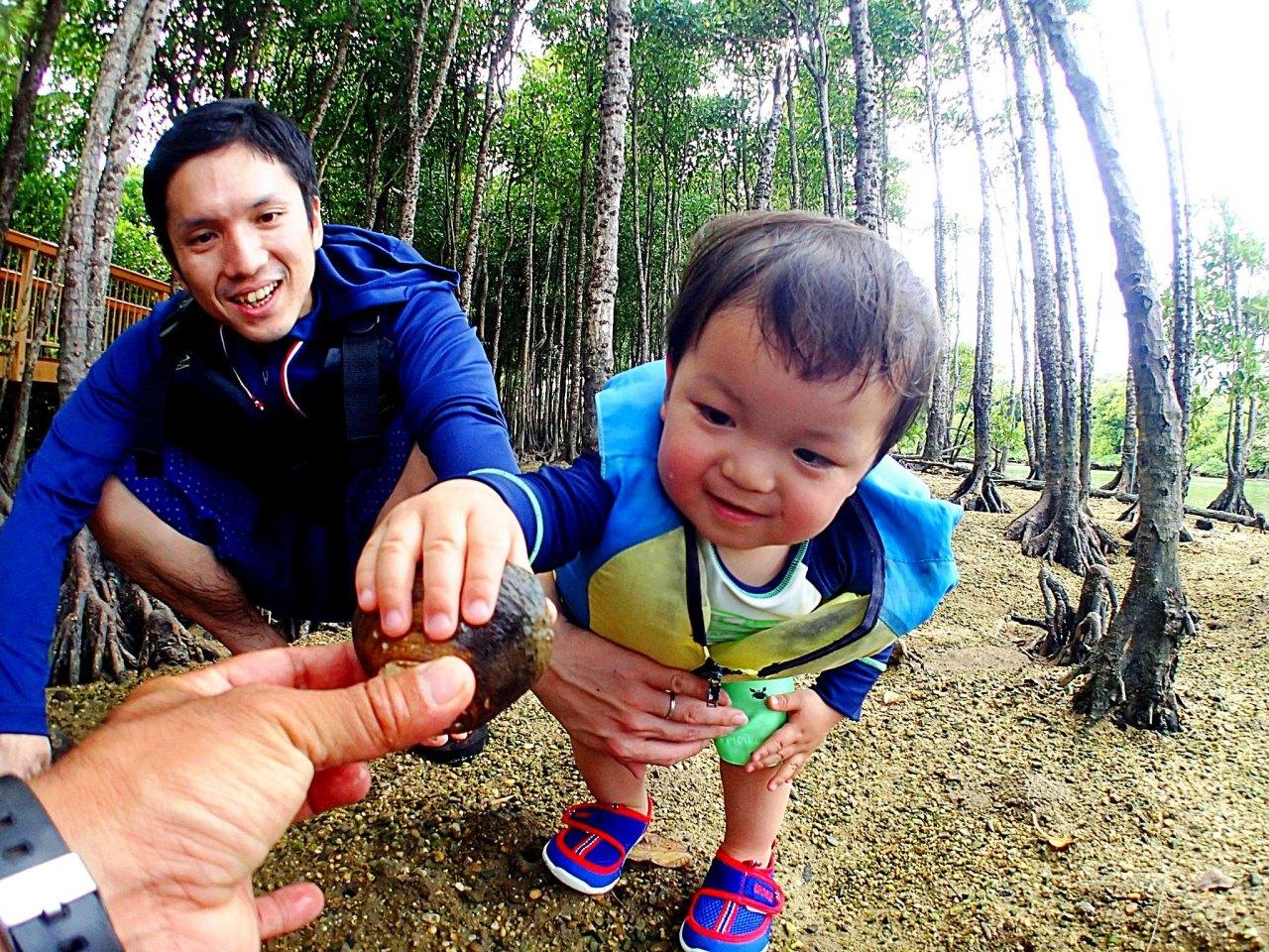 【地域共通クーポン・可】【1歳~OK】1グループ貸切制 熱帯ジャングルマングローブのカヤック探検!熱帯ジャングルマングローブのカヤック冒険