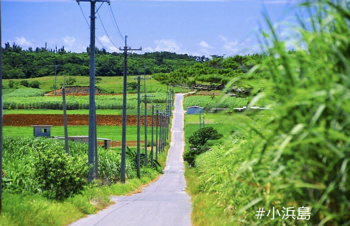 《平田観光》西表島・由布島・小浜島3島Bコース西表島・由布島・小浜島3島Bコース
