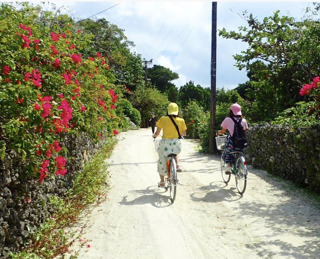 《平田観光》竹富島観光D サイクリングフリーコース竹富島サイクリングフリー・Dコース