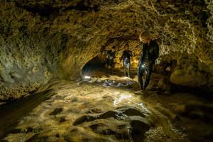 【恩納村(本島北部)開催/約2.5時間】シュノーケリング|夜光虫&星空ナイトシュノーケル!天然洞窟の探検。夜光虫&星空ナイトシュノーケル