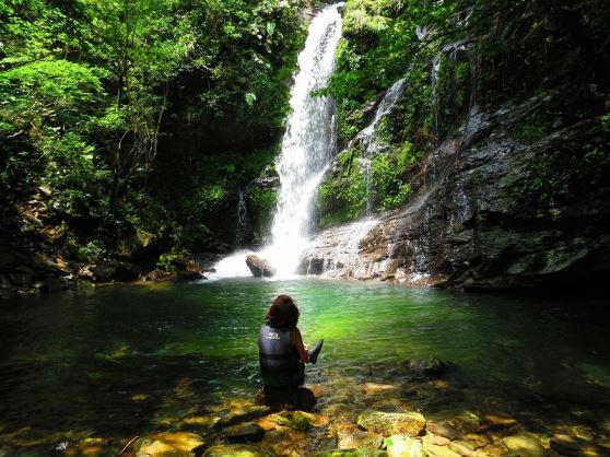 【やんばる(本島北部)開催/約4時間】亜熱帯ジャングル リバートレッキング8:00集合/亜熱帯ジャングル リバートレッキング