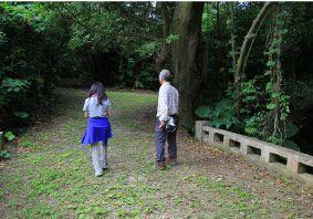 うぷきの森探検<3.ナイトツアー/ハブがいない宮古島でワクワクナイトウォーク>うぷきの森探検 <3.星空ナイトツアー>