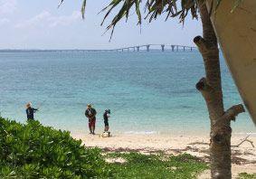 島人と「手ぶらで」のんびり港釣り<島の遊びの王道!釣りを島人と一緒に楽しむ>島の兄にぃと港釣り/ビーチ釣り