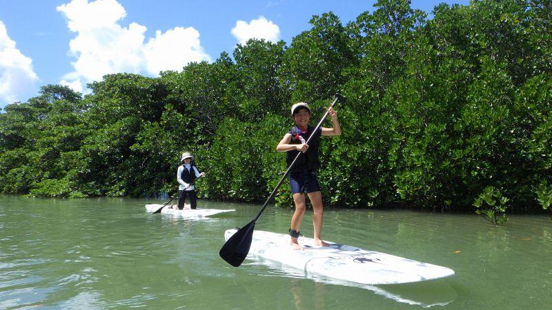 マングローブSUP(貸切) 【石垣島/SUP/スタンドアップパドル/貸切/マングローブ】マングローブSUP(貸切)<水の上に立っている感覚。目線は高め、気分は上々>