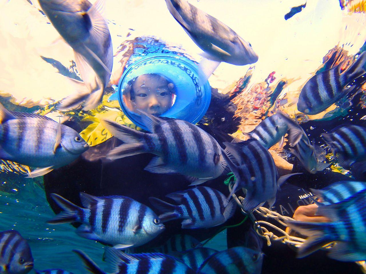 <沖縄・青の洞窟シュノーケリング>ボート利用で安全&楽チン!水中撮影も餌付けも無料の人気ナンバー1ツアー【1日5回/満3歳以上】<1回目/8:00~10:30>青の洞窟体験ボートシュノーケリング