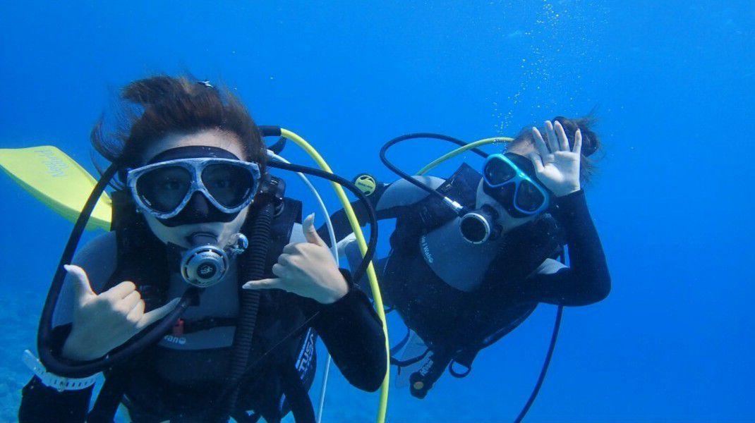 【北部・名護市】【完全貸切】体験ダイビング1日1組限定【完全貸切】体験ダイビング1日1組限定