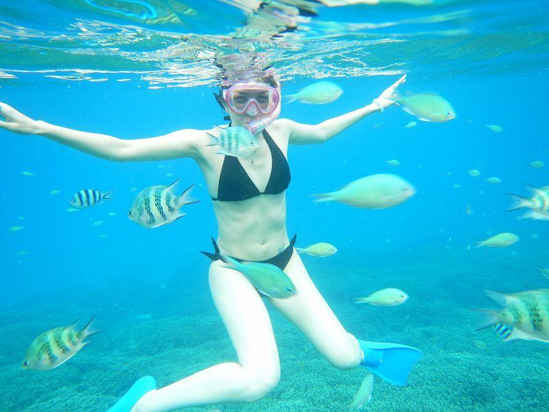 沖縄本島北部・山原(やんばる)の綺麗な海でシュノーケリング♪ビーチエントリーなので初めての方や泳げない方も安心してご参加いただけます!親切・丁寧にレクチャーいたしますのでご安心ください♪【1日3便運行】沖縄本島北部・山原でシュノーケリング♪ 9:00~