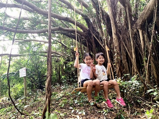 沖縄県南部糸満 ジャングルバギーツアー【9:00】Jungle Buggy Tour