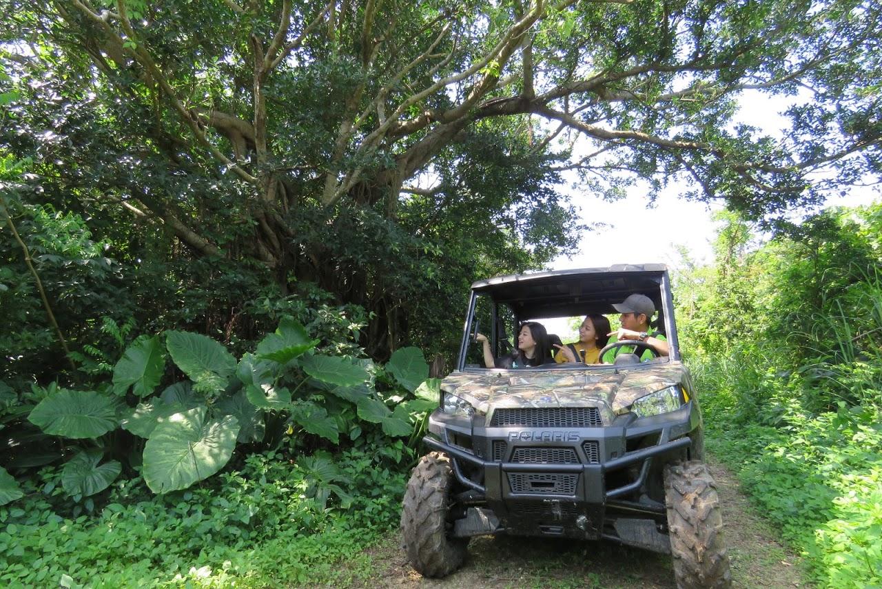 沖縄県南部糸満 ビッグバギーツアーBig Buggy Tour