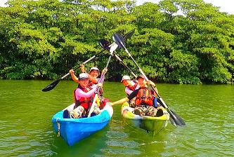 【世界遺産 西表島】小さなお子様も参加可能!仲間川マングローブカヌー体験【ファミリーにおすすめ】【9:30開始】仲間川で日本最大のマングローブカヌー体験を満喫しよう!