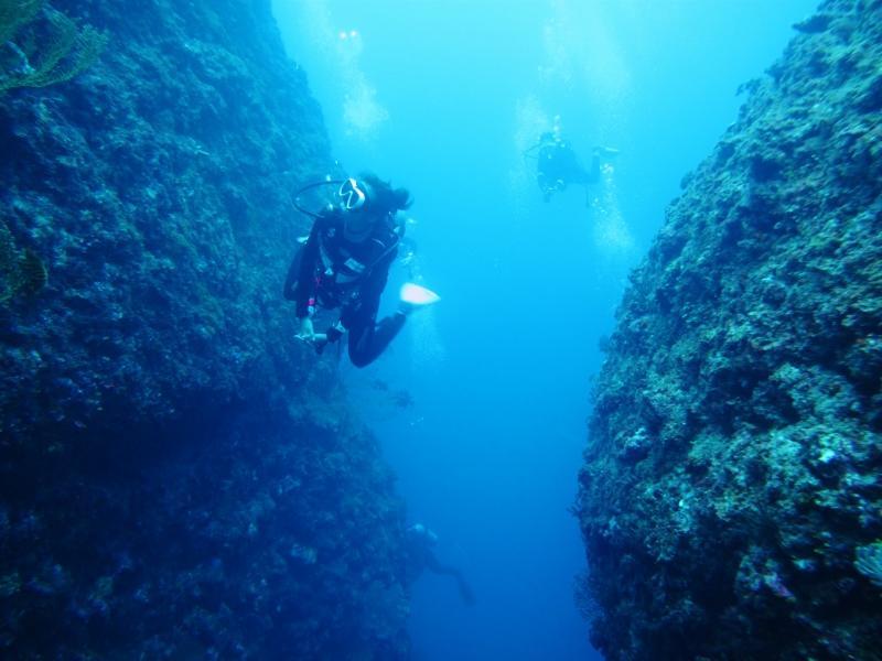【恩納村・前兼久漁港発】恩納村の海でファンダイビング!!9時発  恩納村の海を潜る!ファンダイビング (1ダイブ)
