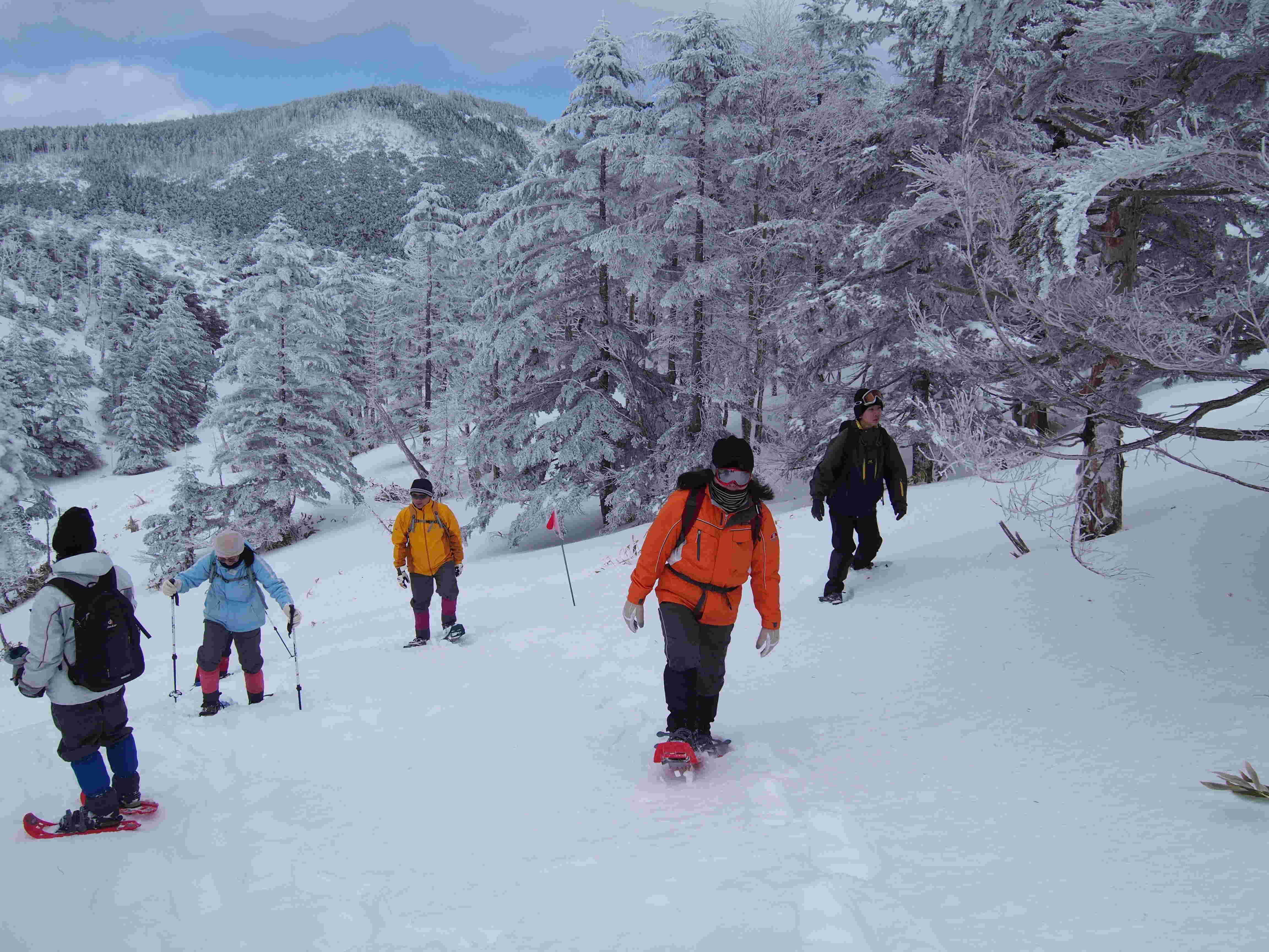 新しい冬の楽しみ方『八ヶ岳でスノーシュー』大人のスノーシュー1日コース『冬のピクニック』
