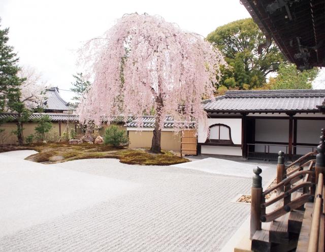 金閣寺・清水寺とねねゆかりの高台寺