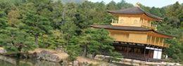 京都定期観光バスツアー