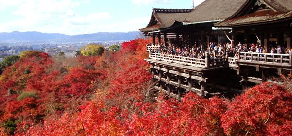 京都・紅葉日帰りバスツアー