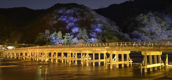 京都・日帰りバスツアー