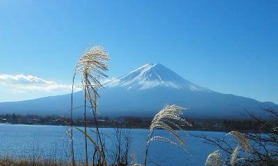 富士山麓 富士河口湖 日帰り