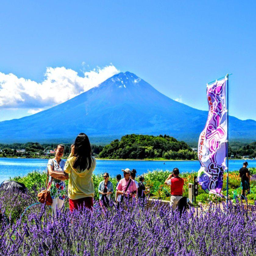 富士山&河口湖一日周遊観光バス[五合目/...の写真
