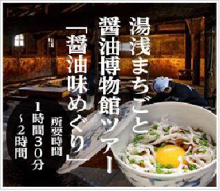 湯浅まちごと醤油博物館「まち歩きガイドと...の写真