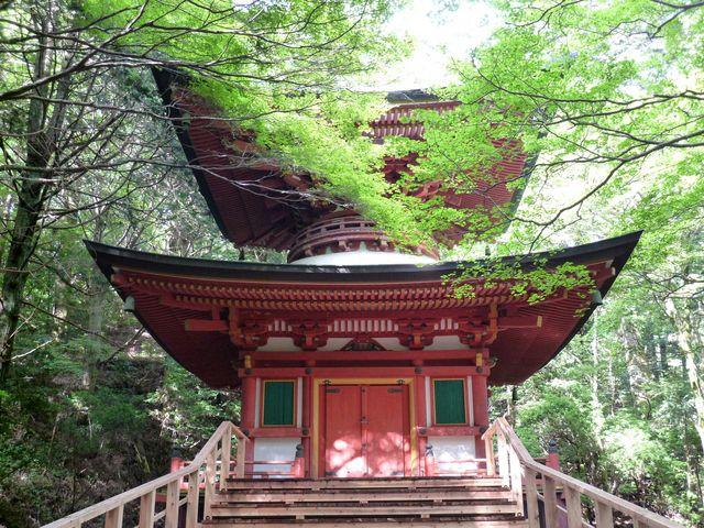 深山の大自然と比叡山・延暦寺と琵琶湖の絶...の写真