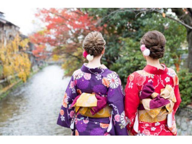 ★Bプラン: 小紋と名古屋帯 [女性]着物レンタル 着物レンタルプランお出かけコース
