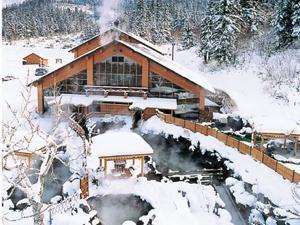 北海道十勝岳・半日スノーシュー体験!嬉しい温泉付