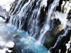 美瑛の青い池・白ひげの滝と旭川でグルメ・地酒めぐり