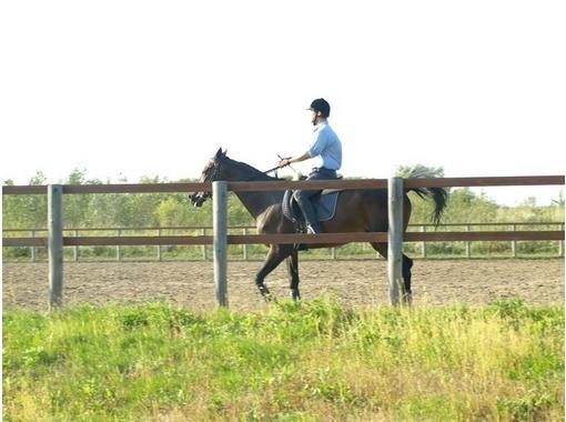 北海道・乗馬体験