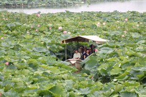 【H1023】壮大な地下神殿!「首都圏外郭放水路」と館林ハスの花ジャングルクルーズ