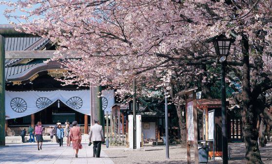 【A410】帝国ホテルと目黒川桜クルーズ