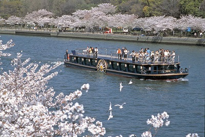水都大阪の定番クルーズ「アクアライナー」の春季限定クルーズ