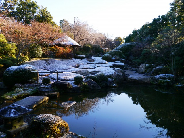 <HR>西本願寺の国宝特別案内と妙心寺 退蔵院で「ZEN(禅)」を学ぶ