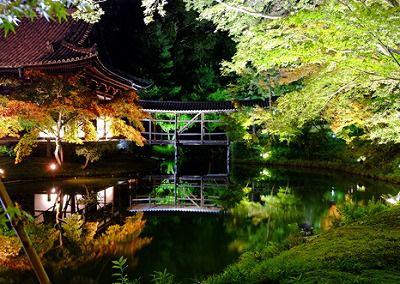 <NR>夜の特別公開 高台寺特別案内と和風旅館「白河院」の湯豆腐