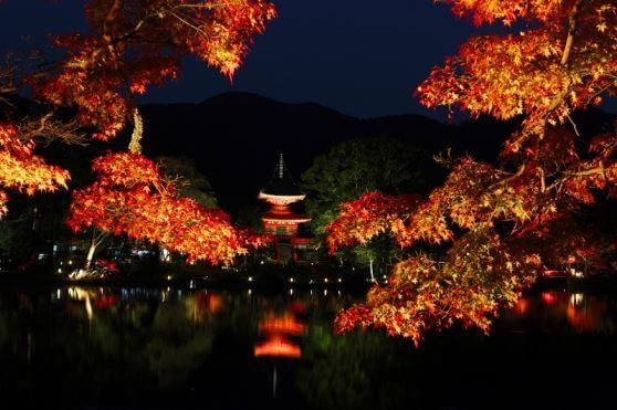 ライトアップ京の紅葉 日本最古の庭池大覚寺大沢池「真紅の水鏡」と嵐山宝厳院